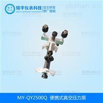 便携式真空压力泵厂家生产直销