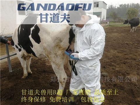 采购进口兽用B超新报价牛用B超价格