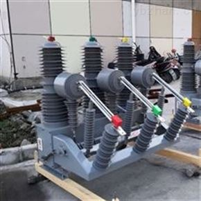 成都小型化35KV电站型真空断路器供应