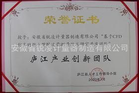 廬江產業創新團隊證書