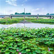 FlowNa水域智能安全识别系统
