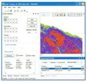 WinDIAS 3叶面图像分析系统