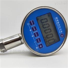 XHP100G可定制高精度数字压力表