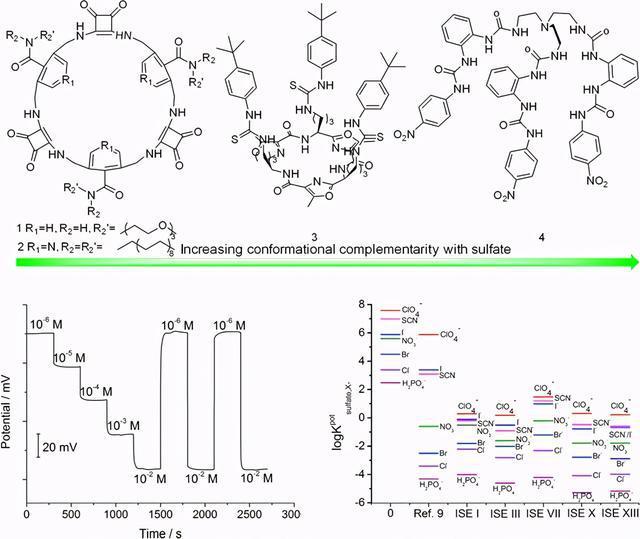 青島科大利用高選擇性硫酸根聚合物膜電極研發環境傳感器