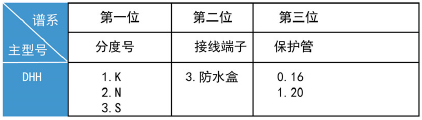 <strong><strong><strong><strong>DHH系列<strong>黑金刚热电偶</strong></strong></strong></strong></strong>2.png