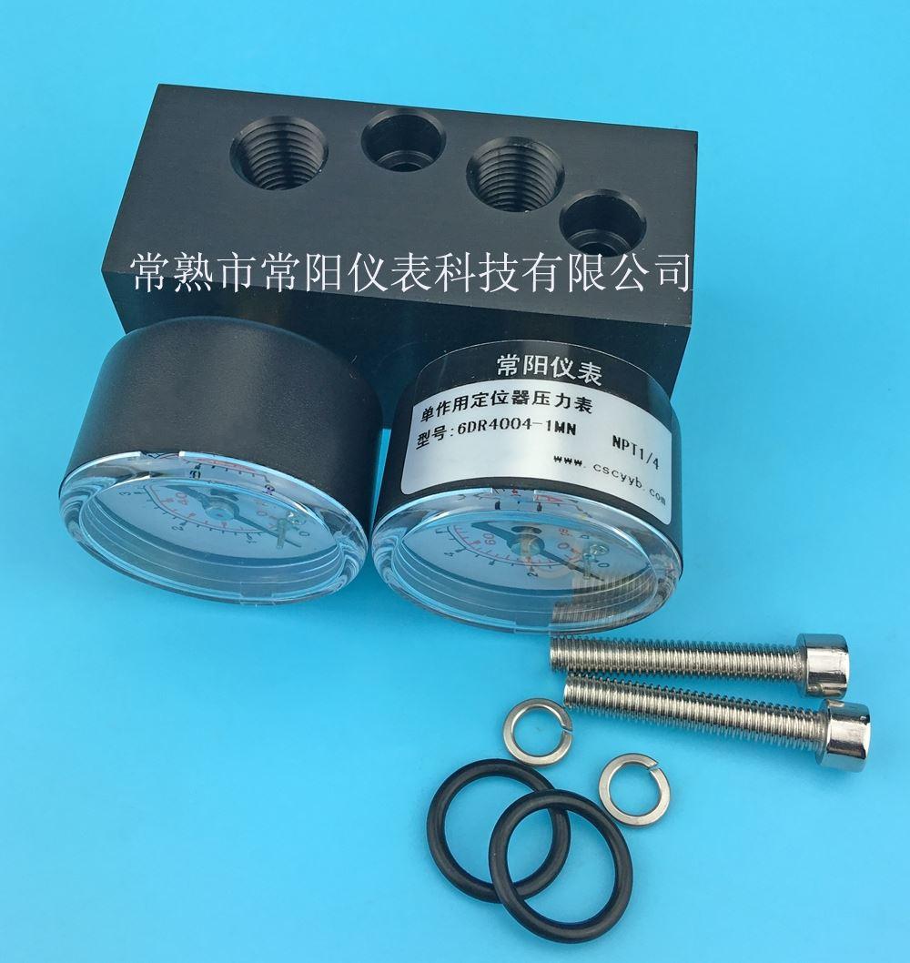 压力表组件 6DR4004-1M单作用压力表